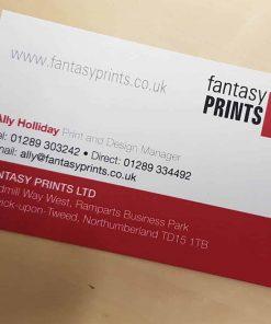 Premium Laminated Business Cards